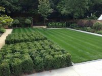 Garden Design and Landscaping with plants