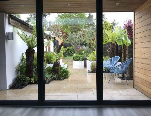 Contemporary Tropical Garden in Crawley