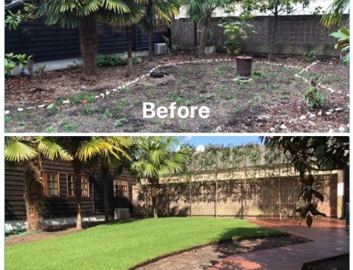 Contemporary Tropical Garden in Shermanbury